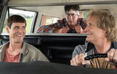"People looking for laughs make smart choice seeing ""Dumb and Dumber To"""