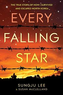 'Every  Falling  Star' shows  North Korea  through  new eyes